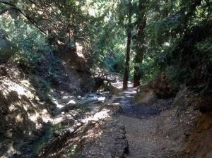 adventurebridge
